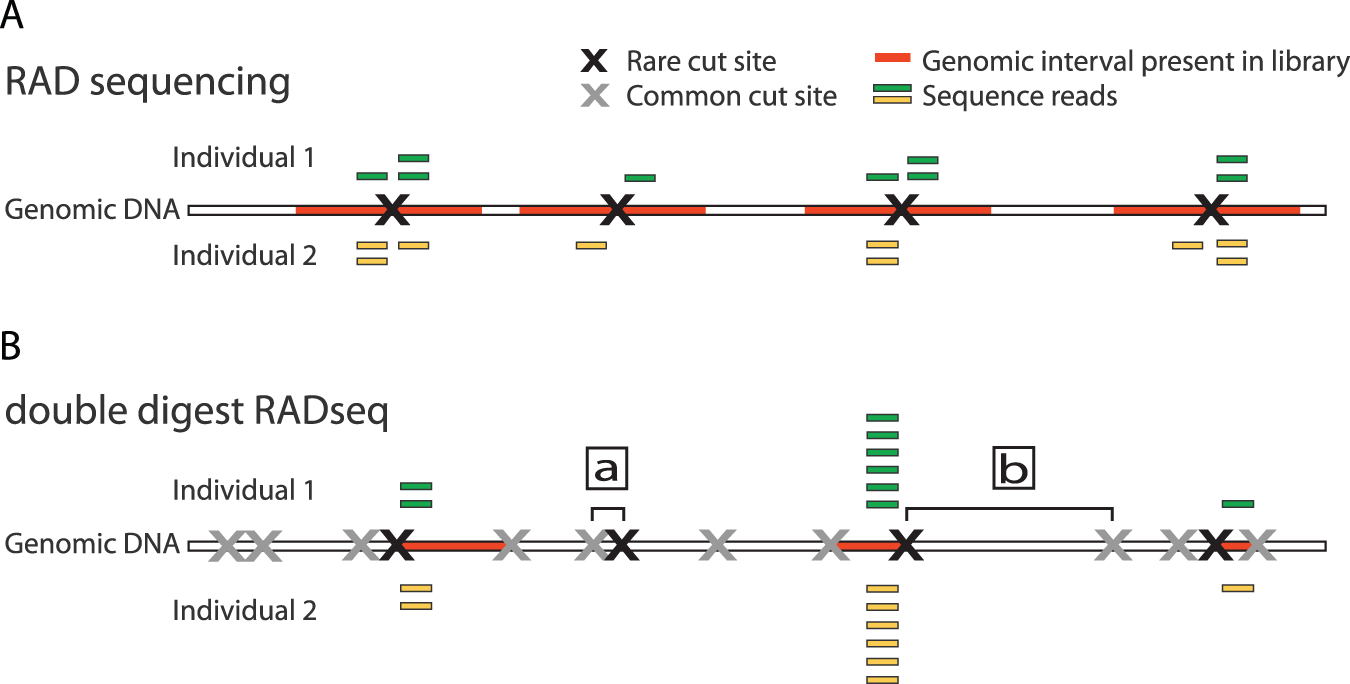 genomics project figure1
